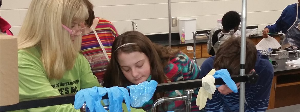 Frog dissection at GNMS!