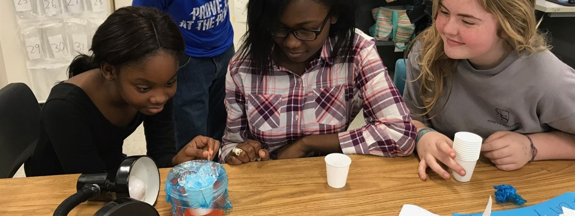 Students in Mrs. Lawrence's class at GNMS making salt water drinkable!