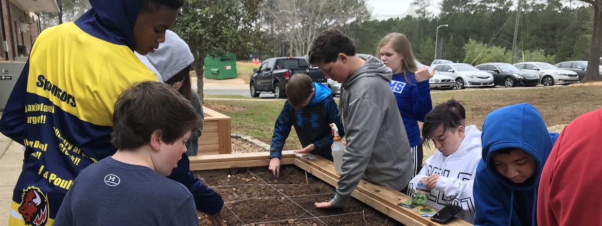 Ag students planted their own gardens at GNMS