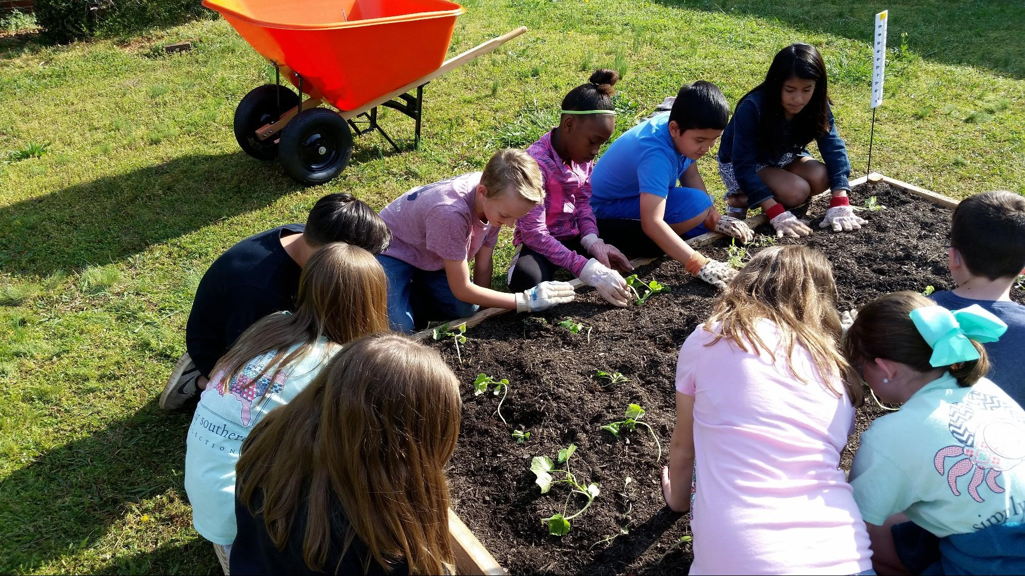 HHES Raised Garden Beds