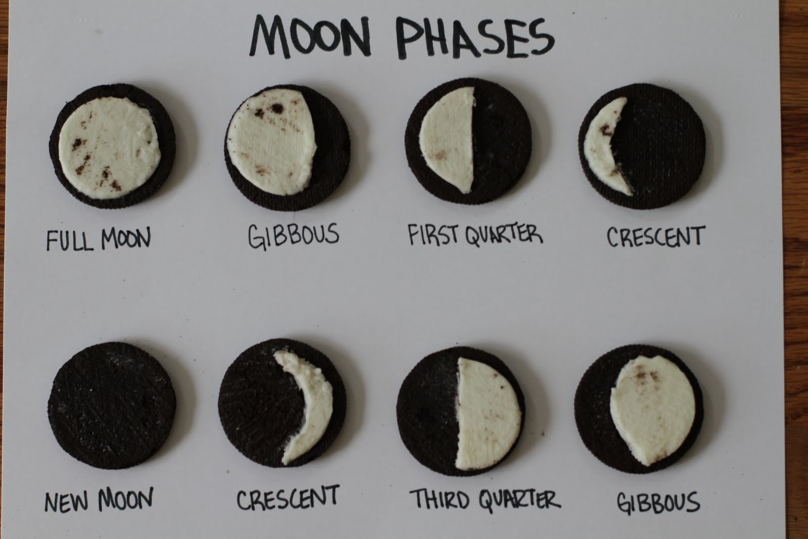 6 grade science astronomy unit information Moon Phases Diagram Blank Orksheets moon phase image